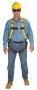 Workman® Harnesses